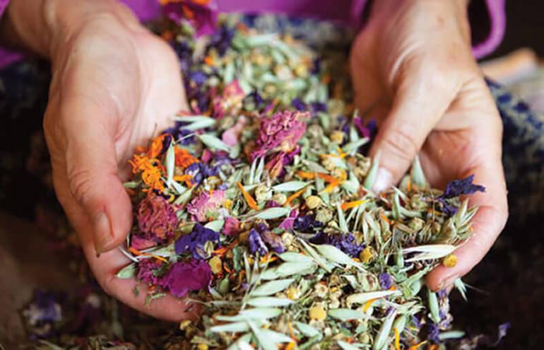 Полезные травы для женщин