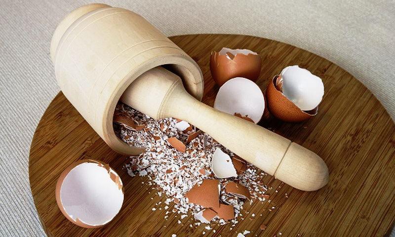 Гиалуроновую кислоту можно получить в домашних условиях из яичной скорлупы