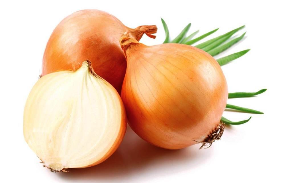 Луковый сок оказывает стимулирующее действие на волосяные луковицы, вызывая приток крови к ним, вследствие этого увеличивается рост волос
