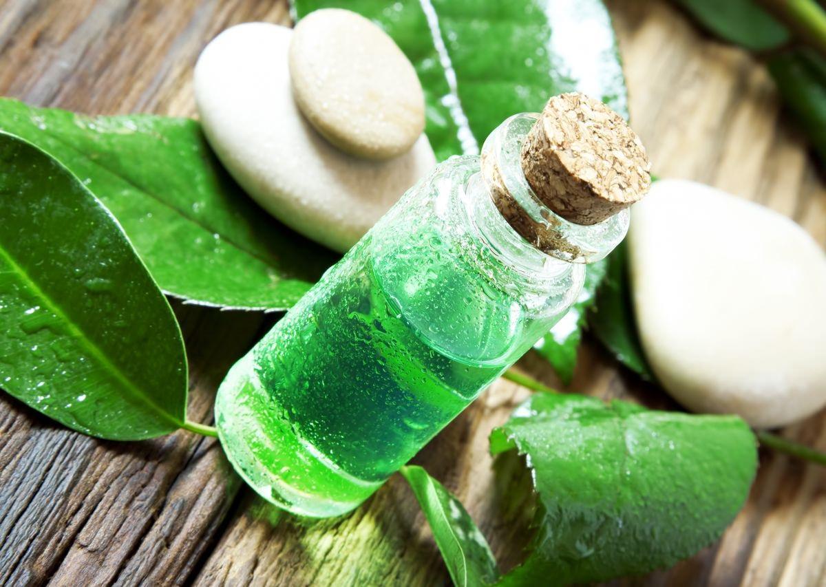 Масло чайного дерева, входящее в состав овсяной маски, отлично подсушивает жирную кожу, убирая воспаления и прочие покраснения