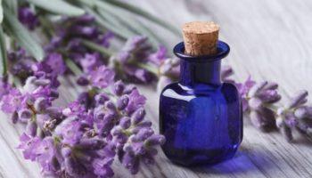 Маска для волос из лаванды: 3 эффективных рецепта