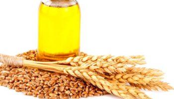 Суперполезное масло зародышей пшеницы: способы применения