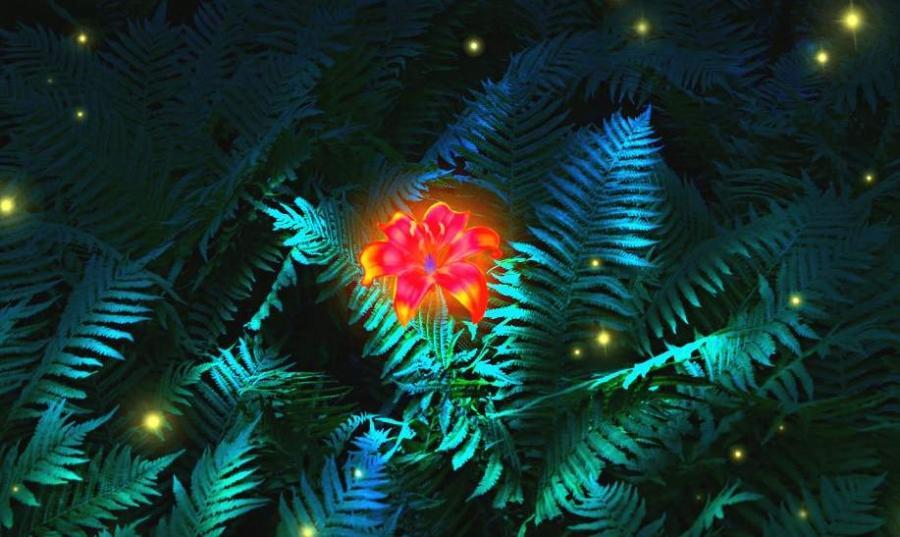 цветок папоротник