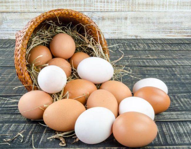 много яиц