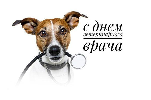 с днем врача ветеринара