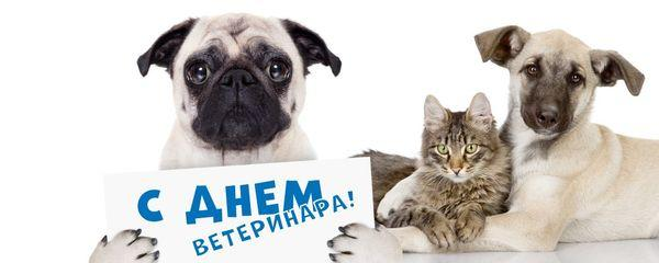 праздник ветеринаров