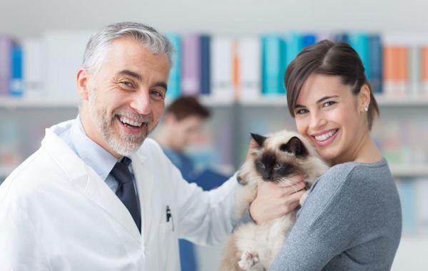врачи ветеринары
