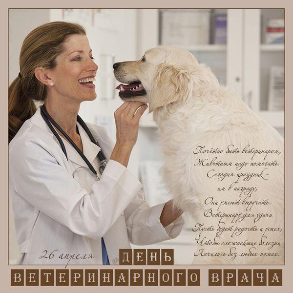 довольно компактны поздравления ветеринарам к новому году могут